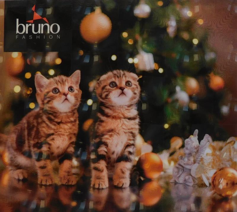 Nemáte ještě vánoční dárky? Chcete svým dárkem udělat radost nejen sobě? Připravili jsme pro vás Vánoční dárkové poukazy, kterými můžete obdarovat své blízké pod stromečkem. A navíc, pomůžete připravit i hezké Vánoce opuštěným a nemocným zvířatkům z útulku Liga na ochranu zvířat v Olomouci. BRUNO na tyto Vánoce přispěje částkou 500 Kč z každého prodaného Vánočního dárkového poukazu. Štědré Vánoce i Vám, děkujeme.