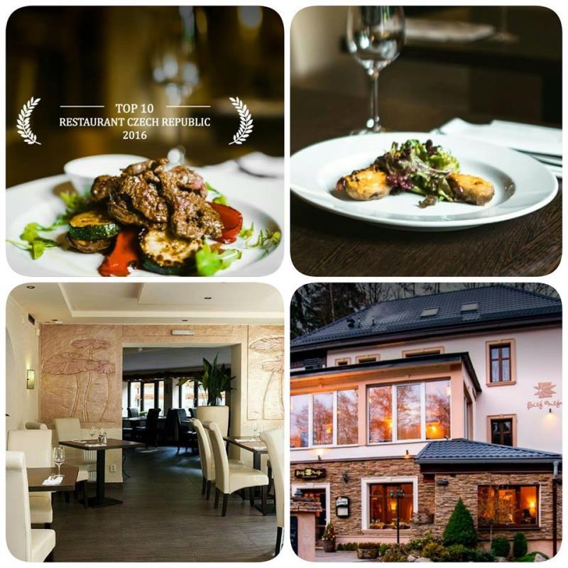Penzion s letní terasou a středomořským restaurantem se specializací na steakovou kuchyni, krásná příroda. To vše nabízí restaurant  Bílý Mlýn.  Přijďte se pokochat tou krásou.