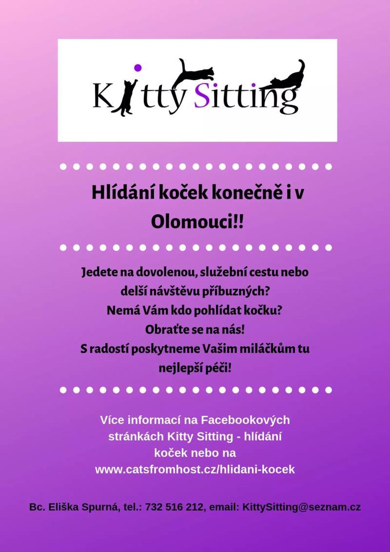 Nová služba pro Olomouc a okolí!