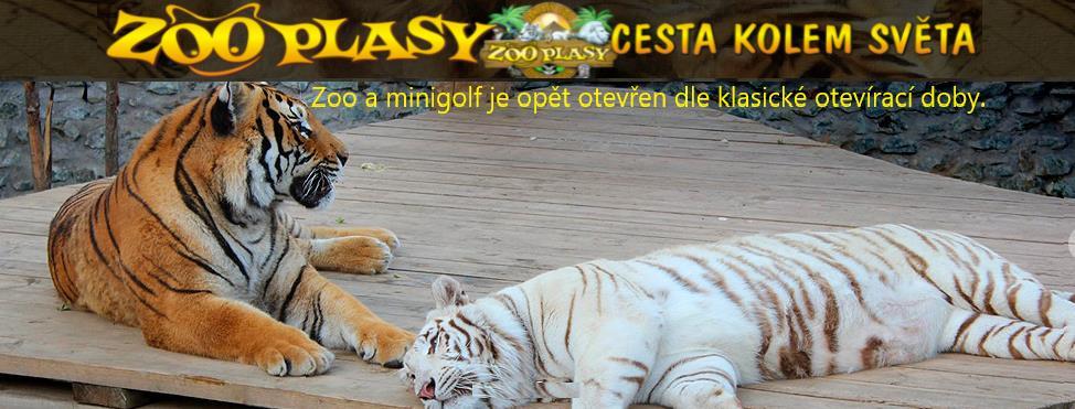 ZOO a Fantasy Golf Plasy