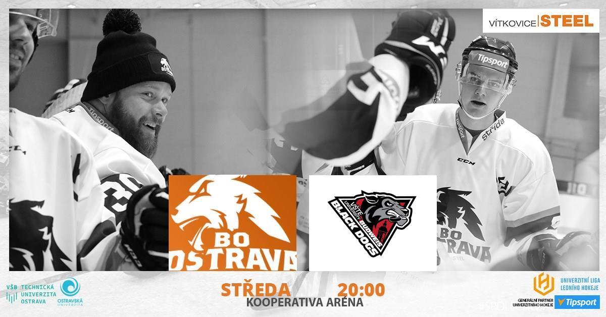 BO Ostrava Vítkovice Steel vs Black Dogs Budweis | 12. kolo ULLH