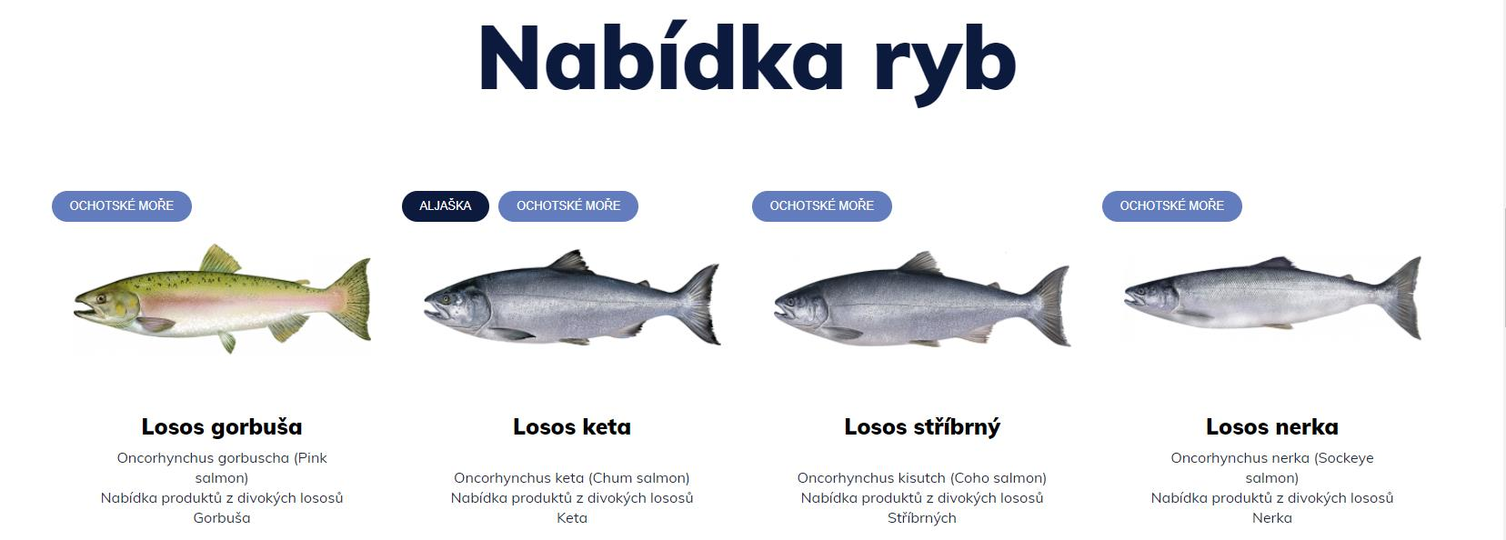 Rozvoz divokých lososů v Olomouci - eastfish.cz